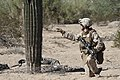 3-6 Marines Conduct Counter IED Training 121002-M-BQ183-003.jpg