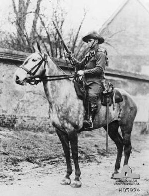 4th Light Horse Regiment (Australia) - Trooper A. G. Forsyth of the 4th Light Horse Regiment. Forsyth later transferred to the 2nd Anzac Mounted Regiment after Gallipoli and died of pneumonia on 2 April 1917 in England.