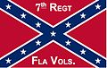 7th Florida Infantry Regimental Colors - ANV Pattern.jpg