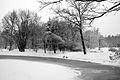 9050vik Park w Pszczynie . Foto Barbara Maliszewska.jpg