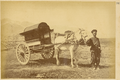 A Chinese Official's Horse-Drawn Cart. China, 1875 WDL1928.png