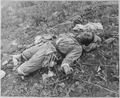 A Chinese soldier, killed by Marines of the 1st Marine Division in Korea during attack on Hill 1051, on Kari San... - NARA - 520794.tif