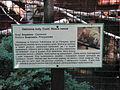 A Silesian Zoological Garden 13.JPG