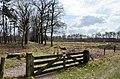 A nice walking route through Westerheide at 1 April 2012 - panoramio.jpg