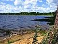 Adamovas ezera krastā. Adamova lake shore. July, 2015 - panoramio.jpg