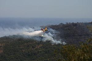 Aerial firefighting in Villeneuve-Loubet (2).jpg