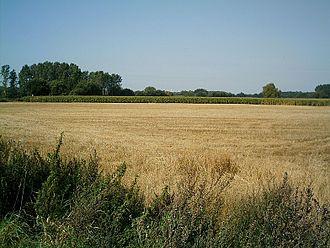 Hatten - Agriculture in Hatten