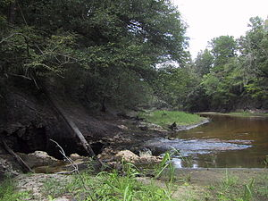 Surface water - Image of the entire surface water flow of the Alapaha River near Jennings, Florida going into a sinkhole leading to the Floridan Aquifer groundwater.