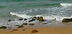 موجات انتقال الطاقه