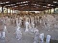 Amphipolis, Pfeiler der Holzbrücke.jpg