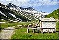 Aostatal (145454077).jpeg