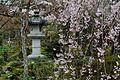 Arashiyama 2011-04 (5795741986).jpg