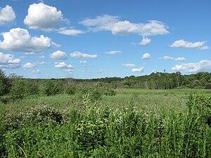 Arlington's Great Meadows - Looking into Arlington's Great Meadows from the Minuteman Bikeway.