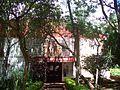 Artes-Universidad-Nacional-de-Misiones-Obera-6.JPG
