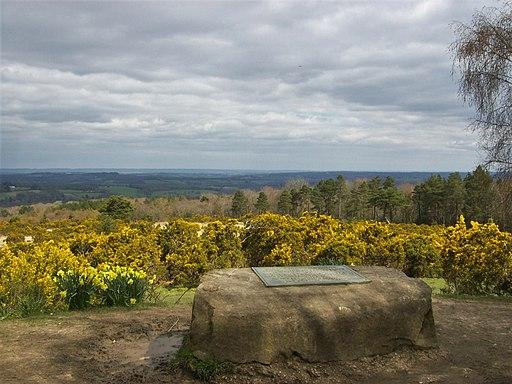 Ashdown Forest, Milne memorial, Gill's Lap 01