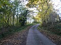 Astwith Lane - Passing through Woodland - geograph.org.uk - 601898.jpg