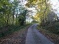 Astwith Lane - Passing through Woodland - geograph.org.uk - 601898.jpg