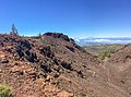 At Teide National Park 2019 093.jpg