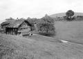 Aufnahme eines Bauernhofs im Entlebuch - CH-BAR - 3241346.tif