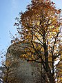 Augarten-Park 70.jpg