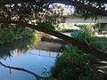 Az Eger-patak (Nagytálya után Rima-patak) Maklárnál.jpg