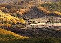 BOULDER MT, UT - 2016-09-30 fall color -01c (31659724515).jpg