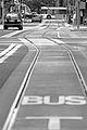 BUS! (4695278658).jpg