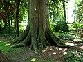 Baden Sightseeing-Tour, Parkanlage Schloß Favorite bei Förch - Rastatt - panoramio (6).jpg
