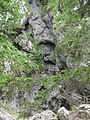 Baerenschuetzklamm20070528 2.jpg