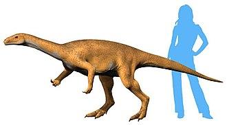 Bagualosaurus - Restoration