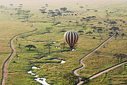 Balloon safari in the Serengeti National Park