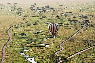Mara Region - Balloon safari in the Serengeti National Park