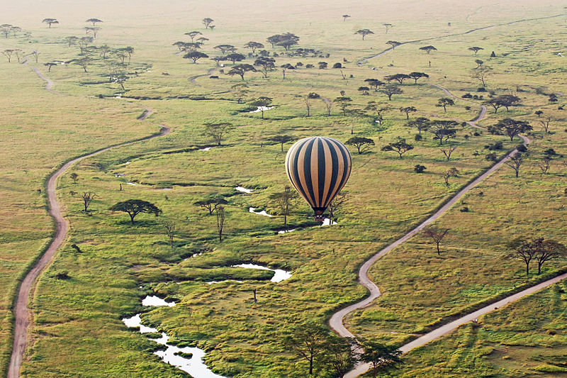 File:Balloon Safari 2012 06 01 3126 (7522678450).jpg