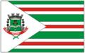 Bandeira pequeri.png