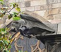 Barcelona Cathedral Gargoyle 07.jpg