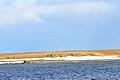 Barents-Bucht 1 2014-09-03.jpg
