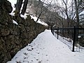 Basalt Wall - panoramio.jpg