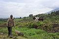 Batwa child - Kisoro, Uganda.jpg