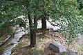 Bautzen Spreehochwasser August 2010 13.JPG