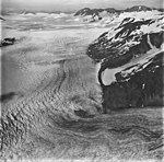 Bear Glacier, valley glacier firn line and icefield in the background, dark folia in the foreground, September 4, 1977 (GLACIERS 6797).jpg