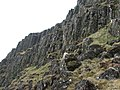 Benbeoch basaltic columns - geograph.org.uk - 771828.jpg