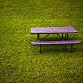 Bench (2680464734).jpg