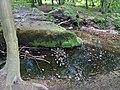 Berner Gutspark mit Deepenhorngraben (1).jpg