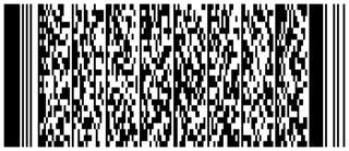 PDF417 type of barcode