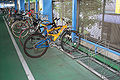 Bicycle pool with rack.jpg
