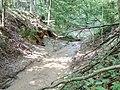 Binzenlöchlesgraben, Bachbett im Großen Wald nach Unwetter (2).jpg