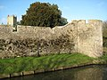 Bishop's Palace and Cathedral, Wells - geograph.org.uk - 1671714.jpg