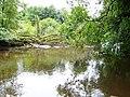 Blackwater River - geograph.org.uk - 528951.jpg
