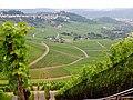 Blick über die Weinberge - panoramio (1).jpg