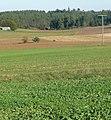 Blick nach Hohenpölz - panoramio.jpg